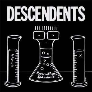 02_08_16 - Punkadaria - descendents-hypercaffium-spazzinate